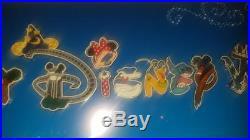 Rare Walt Disney World Framed 15 Pin Set