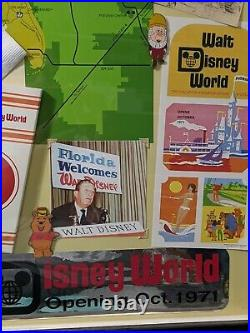 Walt Disney World Florida Project Framed Pin Set & Collage